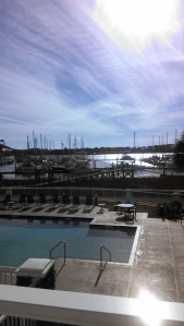View of the Ashley River from our hotel in Charleston, South Carolina